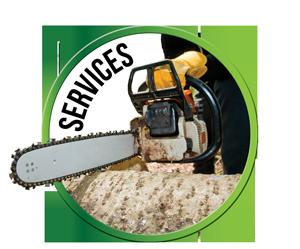 Circle-Mockup-Services