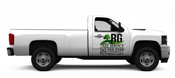 when it comes to your trees rg tree service can handle all of your ...